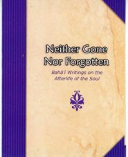 Neither Gone Nor Forgotten