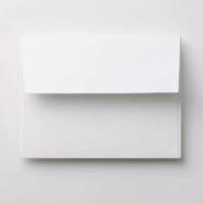 Mini-Book Envelopes