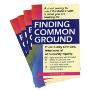 Finding Common Ground Pamphlet