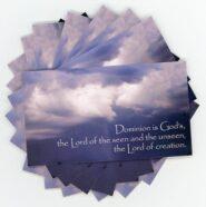 Calamities -Teaching Cards