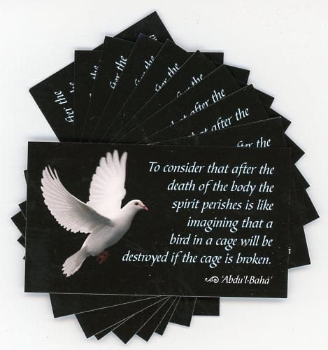 Afterlife of the Soul -Teaching Cards
