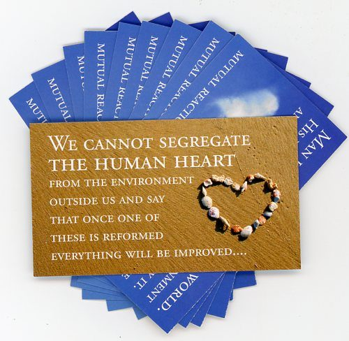 Environment Human Heart -Teaching Cards