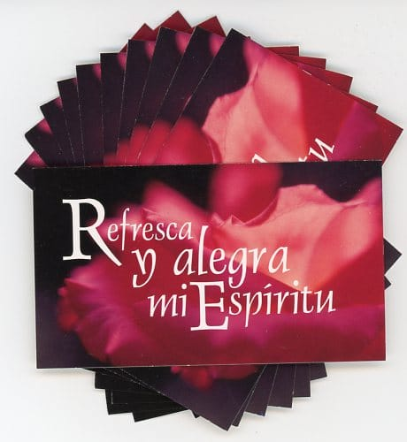 Refresca y alegra -Spanish Teaching Cards